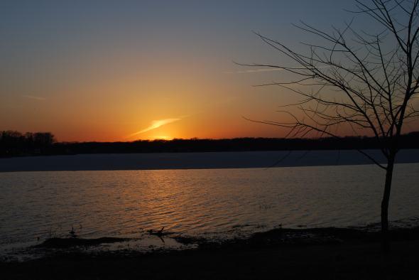 icy pine lake 031