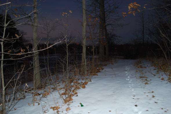 snowy beach 077