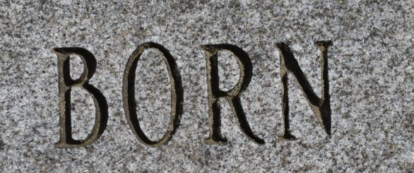 died and born 024